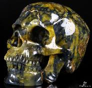 "Giant 8.1"" New Tiger Eye Carved Crystal Skull, Super Realistic"