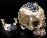 "Original Ranbow 6.3"" Quartz Rock Crystal Druse Carved Crystal Skull With Druse Jaw, Realistic, Crystal Healing"