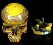 "Gemstone 5.0"" Bumble Bee Jasper Carved Crystal Detachable Skull, Crystal Healing"