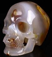 "Nice 5.1"" Carnelian Carved Crystal Skull,Super Realistic, Crystal Healing"