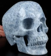 "Lifesized 6.6"" Blue Calcite Carved Crystal Skull,Super Realistic, Crystal Healing"