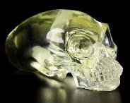 "Huge 4.0"" Citrine Carved Elongated Mayan Alien Crystal Skull, Kingdom of Crystal Skulls"