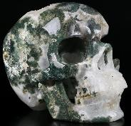 "Huge 5.9"" Green Moss Agate Geode Carved Crystal Skull, Super Realistic, Crystal Healing"