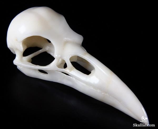 Raven Skull Front