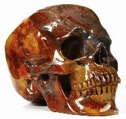 "HUGE 5.2"" African Petrified Wood Carved Crystal Skull, Super Realistic"