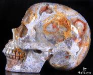 "4.3"" Crazy Lace Agate Carved Crystal Skull, Realistic Skull"