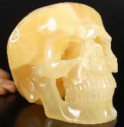 "Translucent Lifesized 7.5"" Afghanistan ''Yellow Ice Jade'' Carved Crystal Skull, Super Realistic"