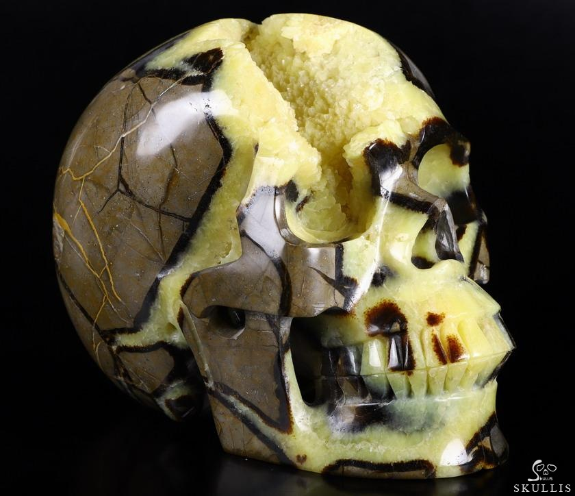 Dragon Septarian Geode Stone Crystal Skull