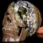 "Titan 10.9"" Dinosaur Egg Agate Carved Crystal Skull, Realistic, Crystal Healing"