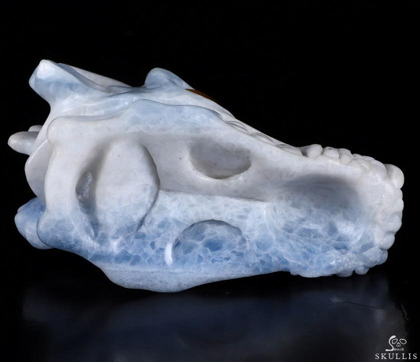 Blue Calcite Crystal Dragon skull With Tiger Eye Eyes