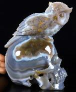 "Amazing 5.1"" Agate Geode Carved Crystal Skull With Owl Sculpture, Crystal Healing"