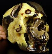 "Huge 6.6"" Dragon Septarian GEODE Stone Carved Crystal Skull, Super Realistic, Crystal Healing"