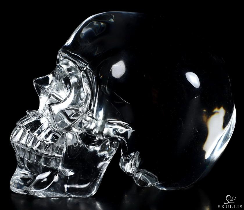 K9 CRYSTAL Crystal Detachable Skull