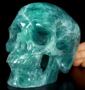 "Lifesized 6.9"" Green Fluorite Carved Crystal Skull, Super Realistic, Crystal Healing"