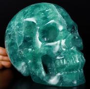"Lifesized 6.9"" Fluorite Carved Crystal Skull, Realistic, Crystal Healing"
