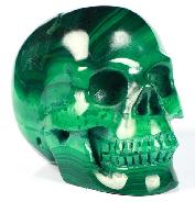 "Gemstone 2.0"" Malachite Carved Crystal Skull, Realistic, Crystal Healing"