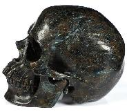"Flash 5.0"" Russian Arfvedsonite Carved Crystal Skull,Super Realistic, Crystal Healing"