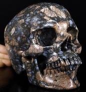 "Lifesized 7.0"" Que Sera Stone Llanite Carved Crystal Skull, Super Realistic, Crystal Healing"