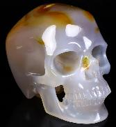 "Gemstone 5.0"" Carnelian Carved Crystal Skull, Super Realistic, Crystal Healing"