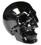 "3.3"" Black Obsidian Carved Crystal Skull Pen Holder, Crystal Healing"