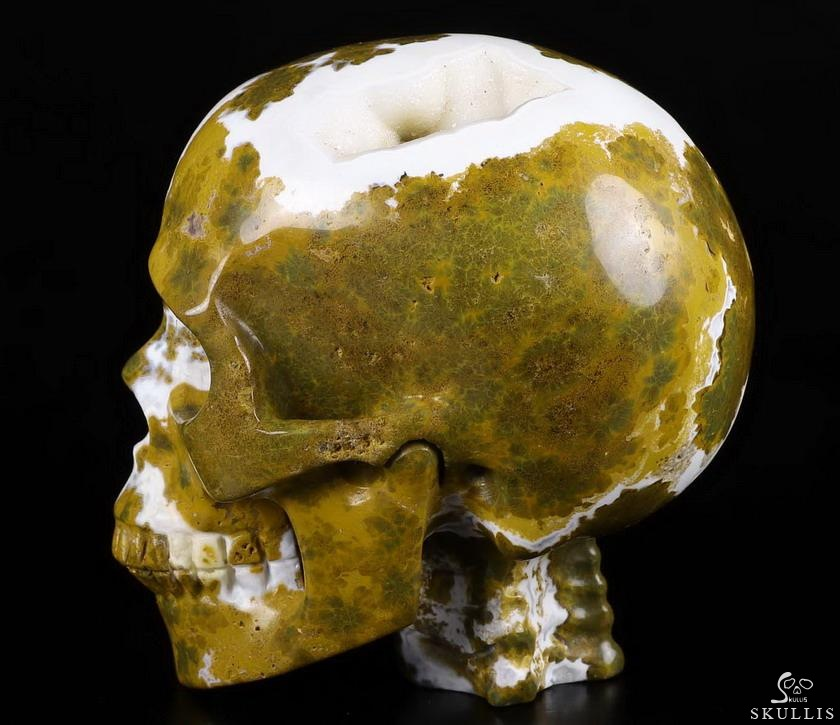 Ocean Jasper Crystal Skull WIth Spine