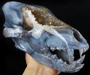 "Geode 9.0"" Amethyst & Agate Carved Wolf Skull Sculpture, Crystal Healing"