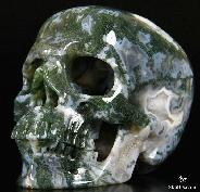 "GEODE HUGE 5.1"" Green Moss Agate Carved Crystal Skull, Super Realistic"