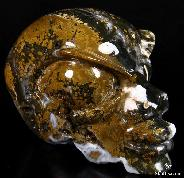 "GEODE HUGE 5.1"" Ocean Jasper Carved Crystal Beauty Alien Skull"