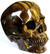 "Awesome Flash Gemstone Lifesized 7.0"" Gold Tiger Eye Carved Crystal Skull, Super Realistic"