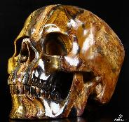 "Awesome Flash Gemstone Lifesized 7.8"" Gold Tiger Eye Carved Crystal Skull, Super Realistic"