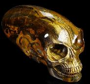 "Awesome Flash Gemstone Titan 11.8"" Gold Tiger Eye Carved Elongated Mayan Alien Crystal Skull"