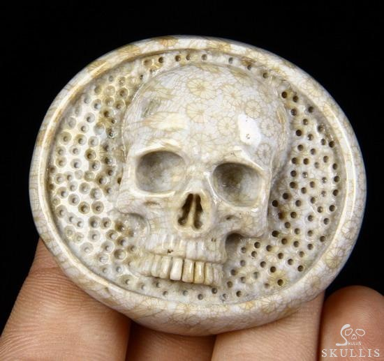 Coral Fossil Crystal Skull Buckle