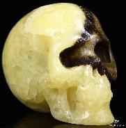 "2.0"" Dragon Septarian Stone Carved Crystal Skull, Realistic"