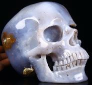 "Amazing Geode Lifesized 7.3"" Blue Chalcedony Carved Crystal Geode Skull, Super Realistic"