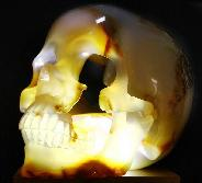 "8.1"" Carnelian Geode Carved Crystal Skull, Super Realistic"