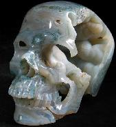 Huge 5.7'' Green Moss Agate Carved Crystal Skull, Super Realistic