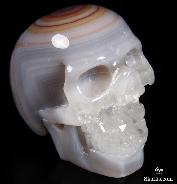 "2.4"" Agate Carved Crystal Druse Skull"
