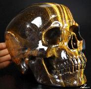 "Awesome Flash Gemstone Lifesized 7.5"" Gold Tiger Eye Carved Crystal Skull, Super Realistic"