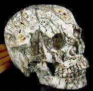 "Lifesized 7.2"" Tree Agate Carved Crystal Skull,Super Realistic"