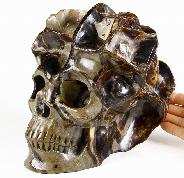 "Amazing Specimen 7.4"" Dragon Septarian Stone Carved Crystal Skull Sculpture"