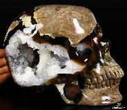 "Nice Amazing Quartz Geode Lifesized 7.3"" Dinosaur Egg Agate Carved Crystal Skull, Super Realistic"
