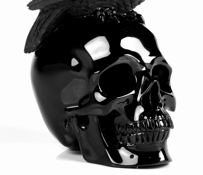 Black Obsidian Crystal Skull & Owl Sculpture