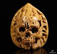 "2.0"" Walnut Carved Crystal Skull"