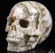 "Gemstone 3.0"" Crazy Lace Agate Carved Crystal Skull, Realistic"