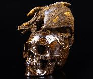 "Amazing 4.8"" Matrix Opal Carved Crystal Skull With Western Dragon"