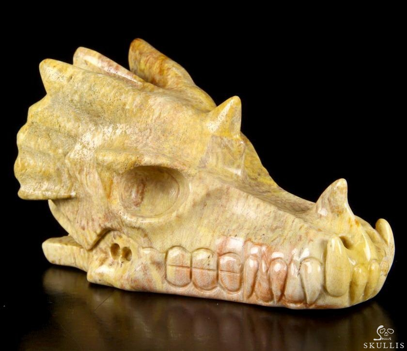 Huge quot coral fossil carved dragon skull realistic