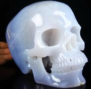 "Gemstone Huge 6.4"" Blue Chalcedony Carved Crystal Skull, Super Realistic, Crystal Healing"