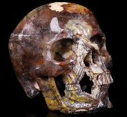 "Gemstone 5.3"" Red Crazy Lace Agate Carved Crystal Skull, Super Realistic, Crystal Healing"