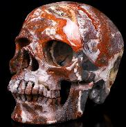 "Gemstone 5.8"" Red Crazy Lace Agate Carved Crystal Skull, Super Realistic, Crystal Healing"