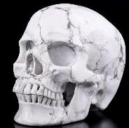 "5.1"" Howlite Carved Crystal Skull, Super Realistic, Crystal Healing"